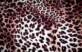 Leopard konsistens — Stockfoto