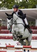 Competição de salto de cavalo — Fotografia Stock