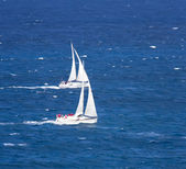 Sailboat group regatta — Stock Photo