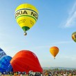 International Balloon Festival — Stock Photo #13347084