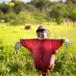 Scarecrow in red — Stock Photo
