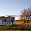 Old ruins — Stock Photo #22772364