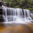 Wentworth falls — Stock Photo #50189095