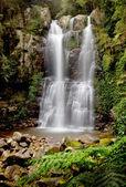 Minnamurra Falls — Stock fotografie