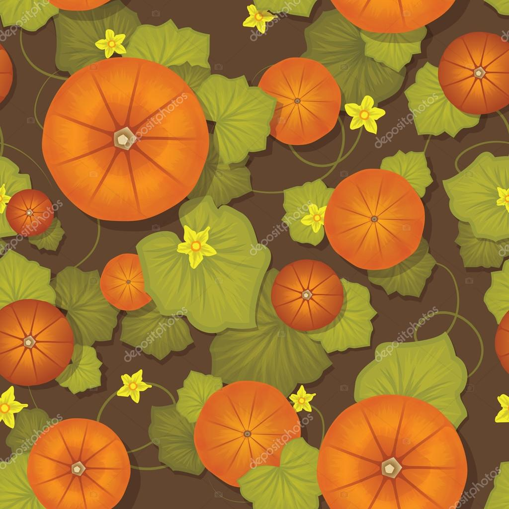 Pumpkin pattern  Image vectorielle #12827942