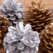 Pine cones — Stock Photo #13785982