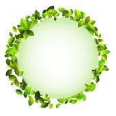 Fresh green leaves border. + EPS10 — Stock Vector