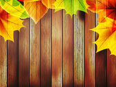 Autumn leaves over old wooden. plus EPS10 — Stock Vector