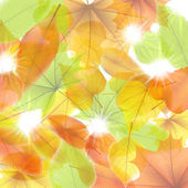 Autumn background with maple leaves. plus EPS10 — Stock Vector
