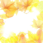 Feuilles d'automne fond d'érable. plus eps10 — Vecteur