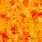 Transparent Autumn Leaves. plus EPS10 — Stock Vector