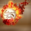 Autumn Sale background with copyspace. plus EPS10 — Stock Vector #51223217