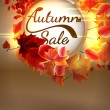 Autumn Sale background with copyspace. plus EPS10 — Stock Vector #51223223
