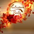 Autumn Sale background with copyspace. plus EPS10 — Stock Vector #51223235