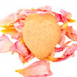 Homemade sweet ginger cookies on a rose petals, isolated on white background. Heart shaped cookies — Stock Photo #31342949