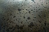 Background in wet wenge — Stock Photo