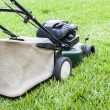 The Lawn mower working in the green yard — Stock Photo