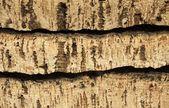 Raw cork planks,texture background — Stock Photo