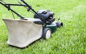 The Lawn mower working in the green yard — Stok fotoğraf