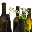 Stock Photo: Empty glass bottles with plant