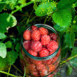Stock Photo: Raspberries in glass jar