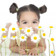 Little girl with daisies on white — Stok Fotoğraf #16021335
