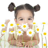 Little girl with daisies on white — Stockfoto