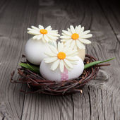 Easter eggs and flowers in a nest — Stock Photo
