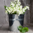 Lilies of the valley in a bucket — Stock Photo #25744699