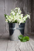 Lilies of the valley in a bucket — Stock Photo