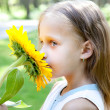 Cute child with sunflower in summertime — Stock Photo