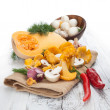 Group of fall harvest vegetables — Stock Photo