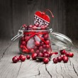 Fresh organic cranberry — Stock Photo