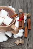 Hot chocolate with marshmallows — Foto Stock
