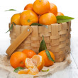 Tangerines with leaves — Stock Photo