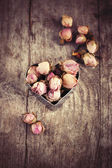 Buds of dried roses — Stock Photo