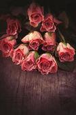 Vintage Flowers  — Zdjęcie stockowe