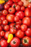 Red tomatoes background  — Stock Photo