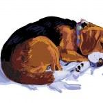 Постер, плакат: Beagle