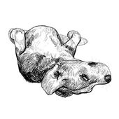 Divertida pose de beagle — Vector de stock