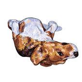 Pose engraçada de beagle — Vetorial Stock