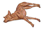 Ležící pes — Stock vektor