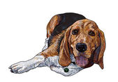 Lying beagle — Stockvector