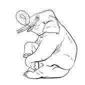 Spectacle de l'éléphant, vector. — Vecteur