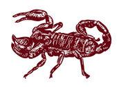 Czerwony scopion — Wektor stockowy