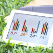 Royalty-Free Stock Photo: Tablet of business growing chart on grass with books