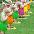 图库照片: Colourful rabbits