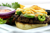 Jalapeno Burger — Stock Photo