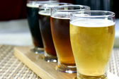 Craft beer sampler — Stockfoto