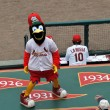 Stock Photo: Fredbird the Mascot of the Saint Louis Cardinals